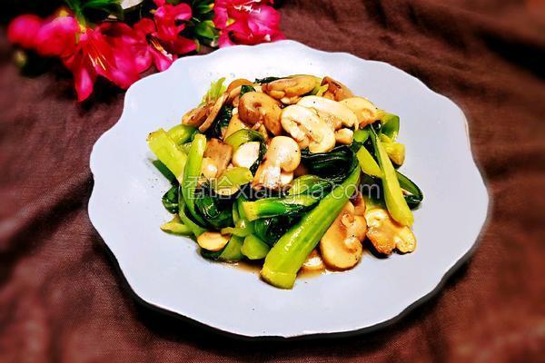口蘑炒青菜