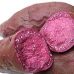 紫薯[图]