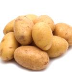 土豆[圖]