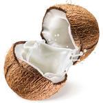 椰子[图]