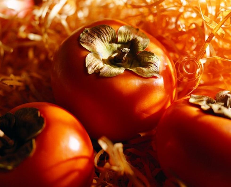 河北大红袍柿