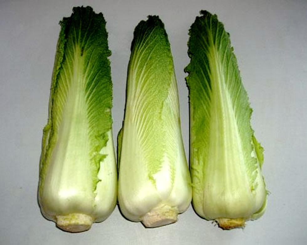 玉田包尖白菜