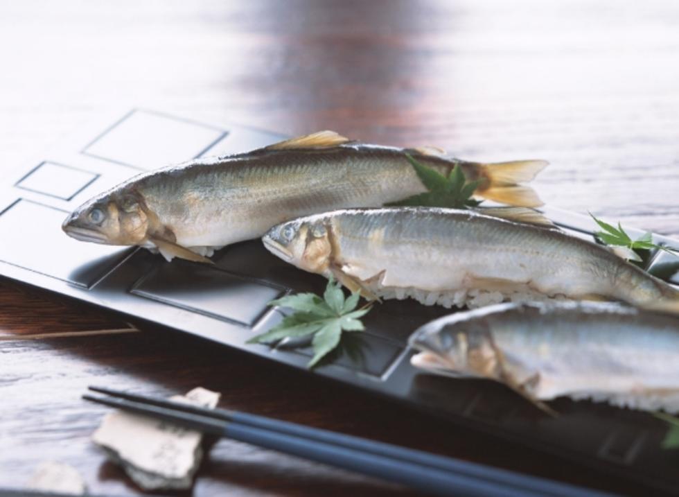 连环湖鳙鱼