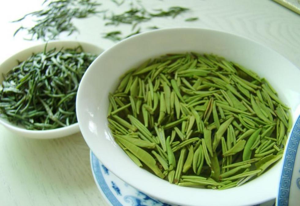 江山绿牡丹