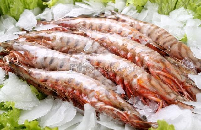 舟山竹节虾