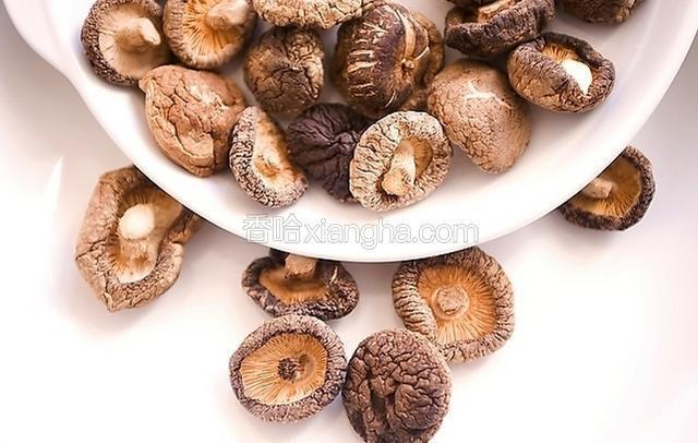 龙虎山香菇