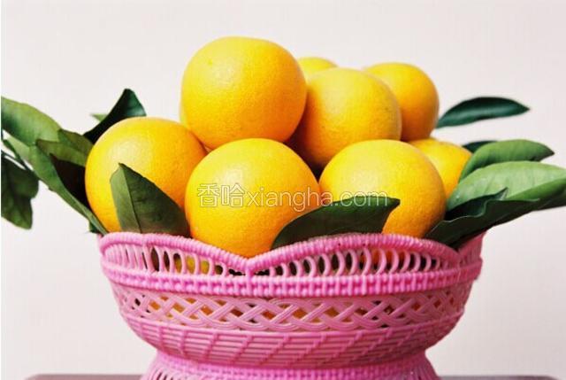 黔阳冰糖橙