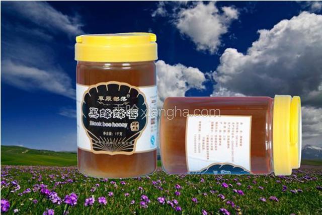 尼勒克黑蜂蜂蜜